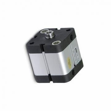 PARKER Pneumatique Cylindre profilé P1E-T100MS -0125 double effet