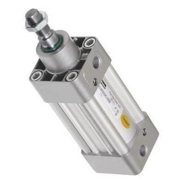 PARKER Pneumatique Cylindre profilé P1E-S080MS-0025 double effet