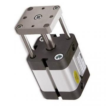 PARKER Pneumatique Cylindre profilé P1E-T100MS -0100 double effet