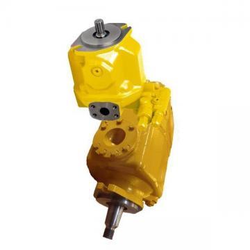 Brueninghaus Hydromatik Aa10vso100dr/31r-pkc62 Hydraulic Piston Pump