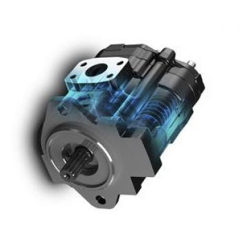 Hydraulique 22 GPM Deux Stage Hi-Low Pompe C/W bell housing Engine Kit