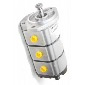 ESEN SKV Pompe Hydraulique, Direction 10SKV049 pour Mini