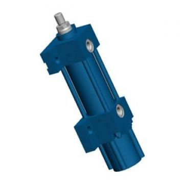 Bosch Rexroth R412003652 Vérins Pneumatiques
