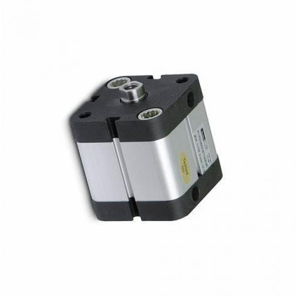 PARKER p1a-s016ss-0010 pneumatique cylindre ISO mini #1 image