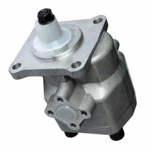 Pompe Hydraulique pour Steyr M 968,M 975 #1 image