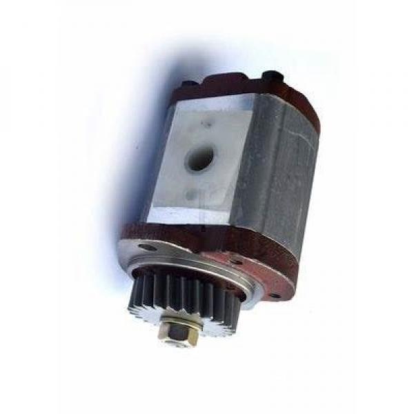 Pompe Hydraulique pour Steyr M 968,M 975 #3 image